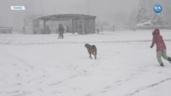 İstanbul'da Kar Etkisini Arttırdı