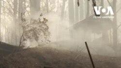 Деякі мешканці Північної Каліфорнії повернулися, щоб оглянути майно, зруйноване у результаті лісових пожеж. Відео