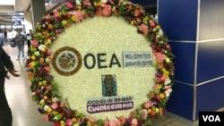 49 Asanble Jeneral OEA nan Medellin, Kolonbi, 26-28 Jen 2019. Foto: Anvwaye espesyal Lavwadlamerik nan Medellin, jacquelin Belizaire.