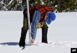 Frank Gehrke, chief of the California Cooperative Snow Surveys Program for the Department of Water Resources, checks the depth of the snowpack as he conducts the third manual snow survey of the season at Phillips Station near Echo Summit, California, March 1, 2017.