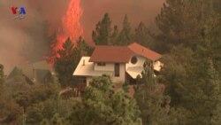 وقتی از «آتش سوزی کالیفرنیا» می گوئیم، درباره چه حرف می زنیم