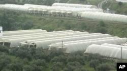 فوجی کارروائی: شامی ٹینک شہروں میں داخل ، کم از کم 5افراد ہلاک