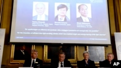 Per Delsing, left, Staffan Nordmark, centre left, Anne L´Huillier and Olle Inganas announce the Nobel prize laureates in physics - Isamu Akasaki, Hiroshi Amano and Shuji Nakamura - at the Royal Swedish Academy of Science in Stockholm, Oct. 7, 2014.