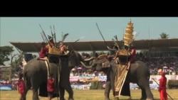 泰国象牙交易市场管理松懈