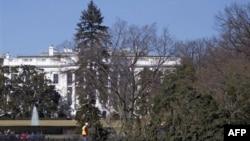 Uashington, era e fuqishme rrëzon Pemën Kombëtare të Krishlindjes