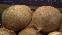 Kokos - čudotvorna hrana
