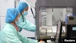 位于云南昆明的中国华大基因集团实验室的科技人员在工作。(2018年12月26日)