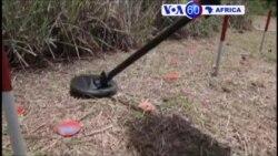 Manchetes Africanas 1 Fevereiro 2017: Angola com falta de dinheiro para desminagem