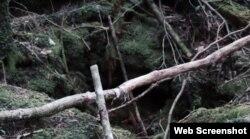 جنگل اوکی گاہارا میں جگہ جگہ گہرے گڑھے اور کھائیاں موجود ہیں۔