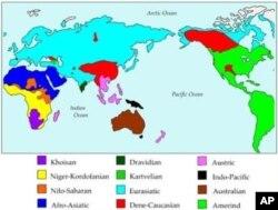 دنیا کے 12 بڑے لسانی خاندان