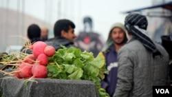 آرشیف: قیمت مواد غذایی در شهر موصل تا ۲۰ برابر افزایش یافته است