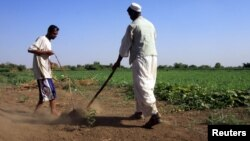 Sudanese farmers prepare their land for agriculture on the banks of the river Nile in Khartoum. Feed the Future aims to improve climate resilience in crops.