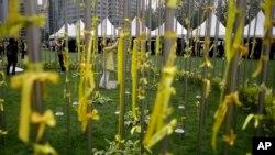 2일 한국 서울 강변에 침몰한 여객선 세월호 희생자들을 기린는 노란 리본이 달려있다.