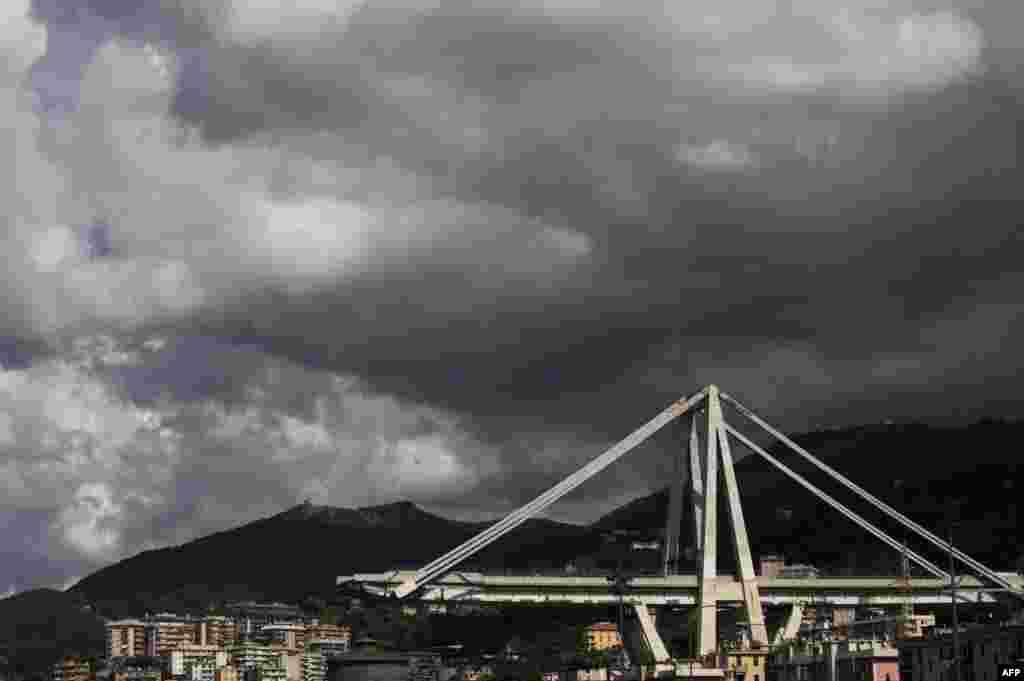 تصویری از پل فروریخته در بزرگراه شهر بندری جنوا ایتالیا. این پل در یک بزرگراه اصلی که ایتالیا را به فرانسه متصل می کند احداث شده بود و با فروریختن قسمتی از آن، خودروها از ارتفاع حدود ۴۵ متری سقوط کردند.