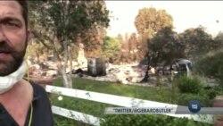 Лісові пожежі в Каліфорнії знищили будинки зірок Голлівуду. Відео
