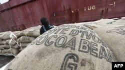 Công nhân khuân các bao cocoa lên tàu tại bến cảng Abidjan
