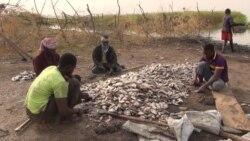 Des pêcheurs se disent victimes de racket d'hommes en tenue de sécurité