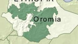 Mormii Uummataa Yeroo Dheeraatii Booda Oromiyaan Amma Maal Keessa Jirti: Kutaa 2ffaa