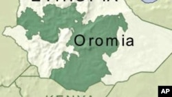 100 Ethiopian Oromo Rebels Surrender