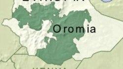 Godinaalee Oromiyaa Mara Keessatti Hagaya Ja'a Hiriirri Nagaa Geggeessamuuf Karoorfame