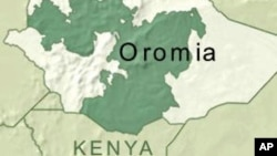 Hidhaa fi Dararaan Nutti Hammaate: Jiraattota Oromiyaa fi Naannolee Adda Addaa