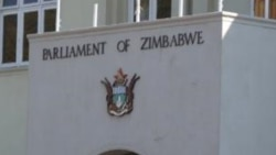 Interview With Effort Nkomo on Local Govt Laws Amendment Bill