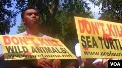 Aktivis hak binatang di Bali memrotes konsumsi daging satwa liar yang berlebihan. (Photo: VOA/Muliarta)