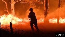 2019年12月31日消防员在澳大利亚新南威尔士灭火。
