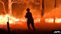 Cháy rừng ở tiểu bang New South Wales, Úc
