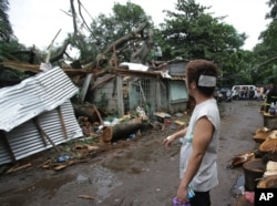 Injured resident Arnel Castillo looks at the damage to his home caused by a fallen tree from Typhoon Koppu in suburban Quezon city, north of Manila, Philippines, Oct. 19, 2015.