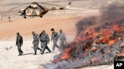 Polisi Afghanistan membakar narkoba dan minuman keras hasil sitaan di Jalalabad, sebelah timur ibukota Kabul (foto; dok).