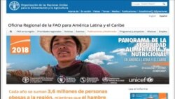 FAO: crisis alimentaria en Venezuela