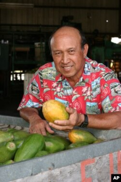 Dennis Gonsalves and his creation, the Rainbow papaya