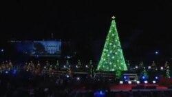 点亮圣诞树,点亮节日夜空