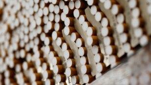 Những điếu thuốc lá lậu bị phát hiện khi các sĩ quan hải quan, dựa trên thông tin tình báo, đã xác định và kiểm tra một container vận chuyển.