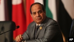"Egyptian President Abdel Fattah al-Sissi says Nov. 23, 2016, his country's support of the Syrian regime against what he called ""extremists"" is necessary for the stability of the region."