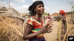 In this photo taken Jan. 26, 2016, Mayrem Humeyisu talks about food supply in her neighborhood in a rural village Dubti Woreda, Afar, Ethiopia.