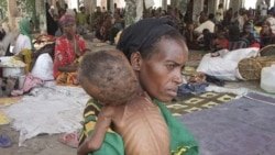 ۴ میلیون نفر در سومالی در بحران قحطی به سر می برند