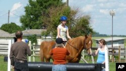 If ever there was a summer-camp staple, it's horseback riding.