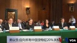 美議員: 應該向所有中國貨物徵收20%關稅