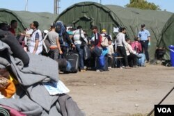 Croatian police, some in riot gear, organize lines of travelers in an attempt to register them. By late Wednesday, refugees said they had given up, and were shuttling them across the country, Opatovac, Croatia, Sep 23, 2015 (VOA Photo By: H. Murdock)