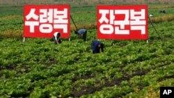 북한 황해북도 사리원의 한 협동농장. (자료 사진)