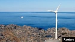 Estudios sugieren que ciertas algas marinas pueden reducir las emisiones de metano del ganado. Foto de Utsira, una isla del Mar del Norte. Reuters/Wojciech Moskwa