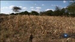 Aграрії можуть призупинити деградацію ґрунту і, заощадити гроші за допомогою цих технологій. Відео