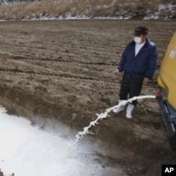 A farmer drains milk into a pit in Iitate, northeastern Japan.