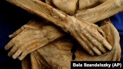 Hungarian Mummies
