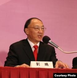 中国体育总局局长刘鹏