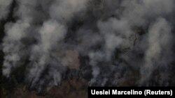 Пожежа в джунглях Амазонії, 21 серпня 2019 року