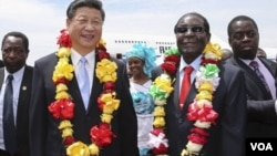 Les présidents chinois et zimbabwéen Xi Jinping et Robert Mugabe.