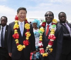 Report on Chinese Deals Filed By Irwin Chifera